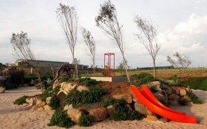 Landscape site development