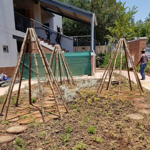 Corporate Garden design